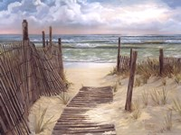 Path To The Ocean Fine Art Print