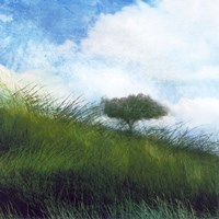 Bright Field IV Fine Art Print