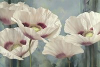 Tasmanian Poppies II Fine Art Print