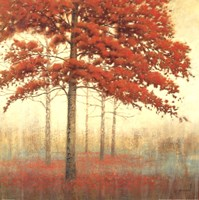 Autumn Trees II Fine Art Print