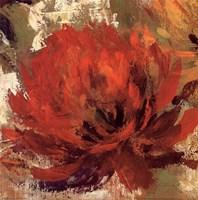 Fiery Dahlias II - Crop Fine Art Print