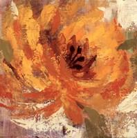 Fiery Dahlias I - Crop Fine Art Print