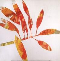 Tropical Landscape II Fine Art Print