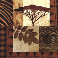 Acacia Sunrise II Fine Art Print