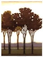 """Arboreal Grove II by Norman Wyatt Jr. - 19"""" x 25"""""""