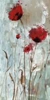 Splash Poppies II Fine Art Print