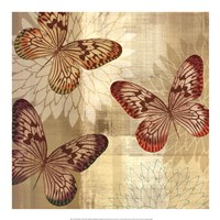"Tropical Butterflies I by Tandi Venter - 20"" x 20"""