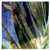 Tropical Memory I Fine Art Print