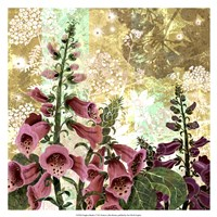 Foxglove Meadow I Fine Art Print