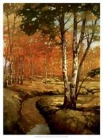 Woodland Stream II Fine Art Print