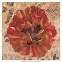 """Poppy Swirl VI by Louise Montillio - 19"""" x 19"""" - $27.99"""