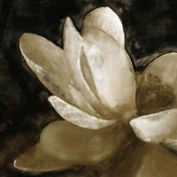 Bronze Lily V by Noah Bay - various sizes