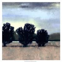 """Moonlit Field II by Vision Studio - 19"""" x 19"""""""