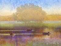 Ducks in Soft Mist by Chris Vest - various sizes