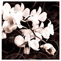 Orchid & Swirls II Fine Art Print