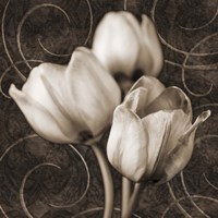 Tulip & Swirls I Fine Art Print