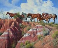 Colored Clay & Quarterhorse by Jack Sorenson - various sizes