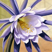 Desert Bloom II Fine Art Print