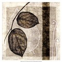 """Fall Leaves II by Christine Zalewski - 17"""" x 17"""""""