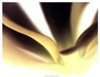 """Petal II by Tang Ling - 25"""" x 19"""""""