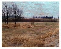 Fields I Fine Art Print