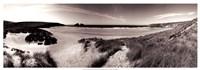 "The Wind in the Dunes II by Noah Bay - 37"" x 13"""