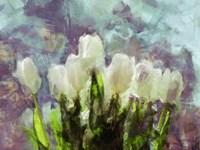 Sunlit Tulips II Fine Art Print