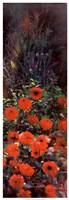"Dahlia Garden II by Li Bo - 13"" x 37"""