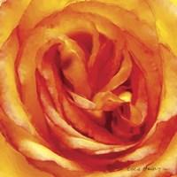 Painterly Flower I Fine Art Print