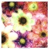 "Floral Reef I by James Burghardt - 19"" x 19"", FulcrumGallery.com brand"