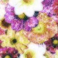 Floral Reef II by James Burghardt - various sizes