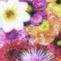 Floral Reef IV by James Burghardt - various sizes