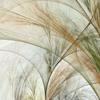 Fractal Grass III Fine Art Print