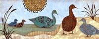 Duck Walk I Fine Art Print