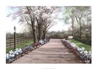 Country Lane Fine Art Print