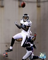 DeSean Jackson 2012 catching the ball Fine Art Print