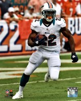 Reggie Bush 2012 Action Fine Art Print
