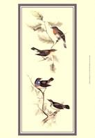"Gould Bird Panel I - 13"" x 19"""