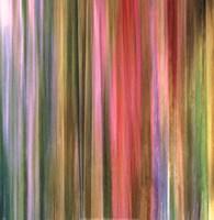 Spectra Falls I Fine Art Print