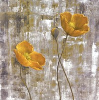 Yellow Flowers I Fine Art Print
