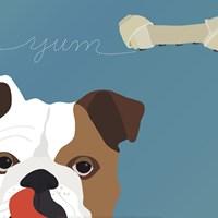 Peek-A-Boo English Bulldog Fine Art Print