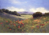Poppies With A View Fine Art Print