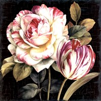 "Garden View VIII Black by Lisa Audit - 35"" x 35"""
