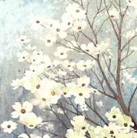 Dogwood Blossoms I Fine Art Print