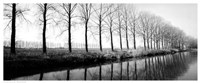 """Trees Along the Canal - 20"""" x 8"""" - $13.49"""