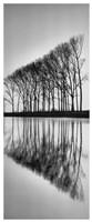 "Reflections - 8"" x 20"", FulcrumGallery.com brand"