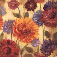 Rainbow Dahlias Crop III Fine Art Print