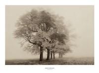 "Harmony in Fog by Igor Svibilsky - 30"" x 22"""