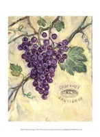 "10"" x 13"" Grape Pictures"