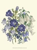 Florals I Fine Art Print